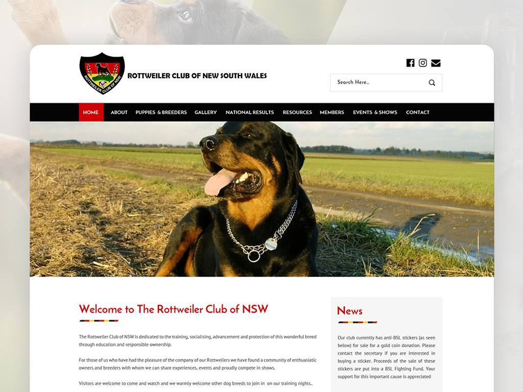 Rottweiler, Pets Website design, Web Design in NSW, Web Design in Sydney, RCNSW, Website Redesign Sydney, Web Development Sydney, The Rottweiler Club of NSW